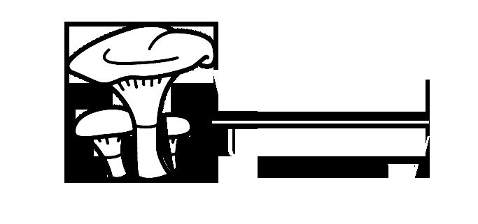 Wysakowski